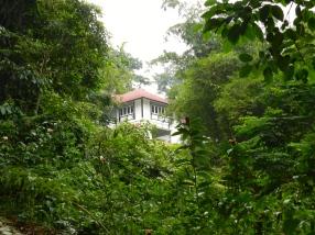 """Les """"black&white"""" houses de style colonials"""