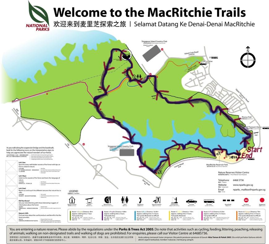 macritchie-trails