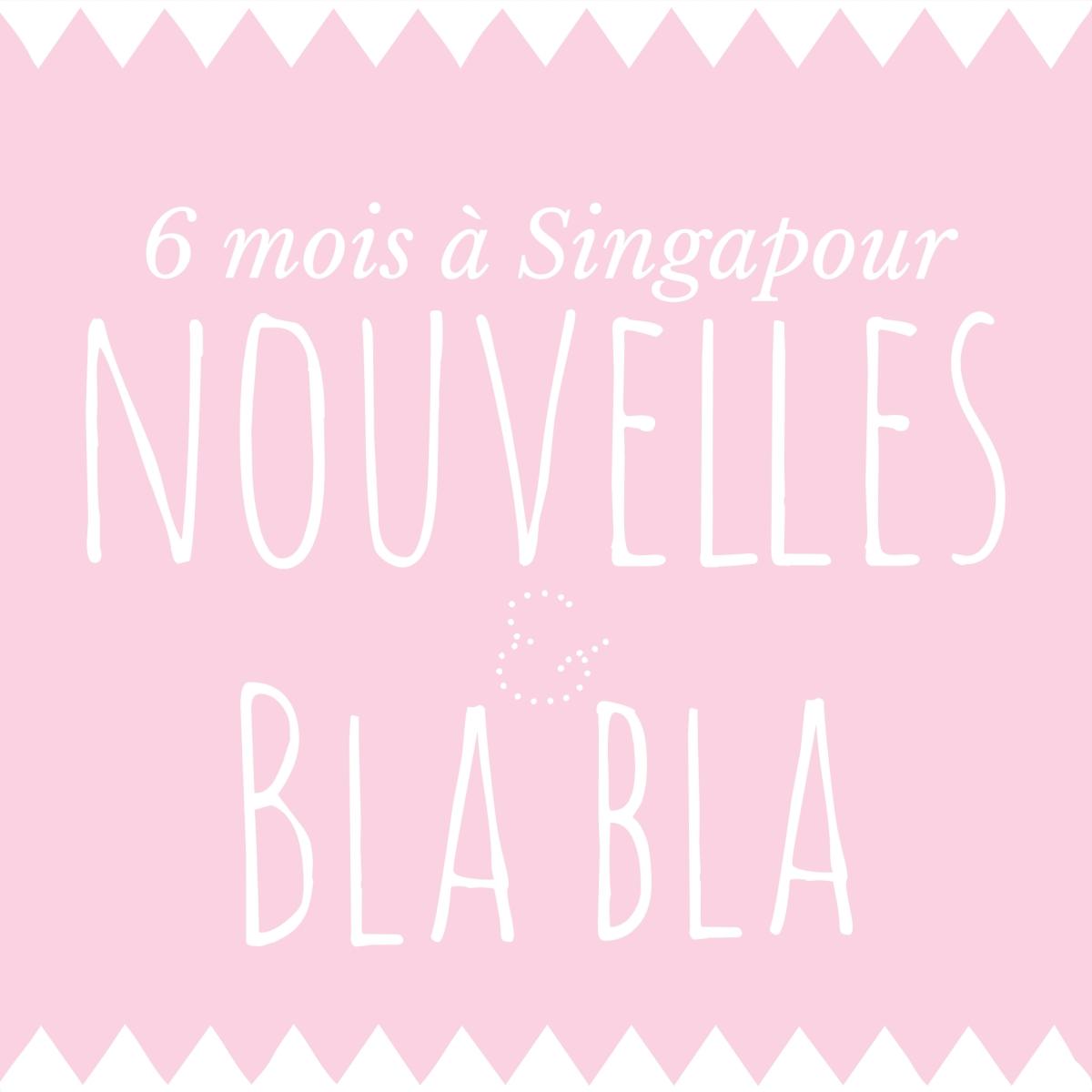 6 mois à Singapour ! ( nouvelles & gros blabla)